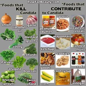 Candida Foods
