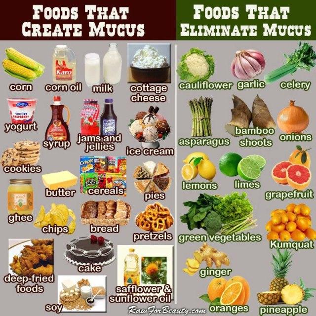 foodscreatemucus