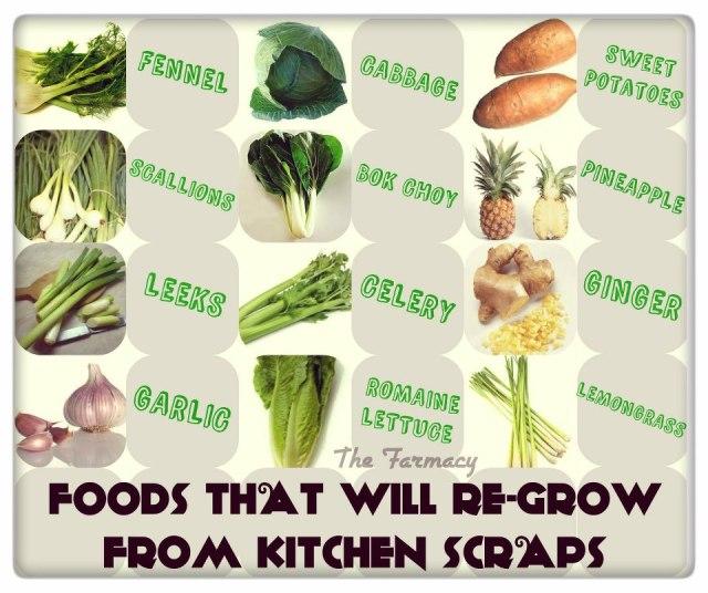foodsthatregrow