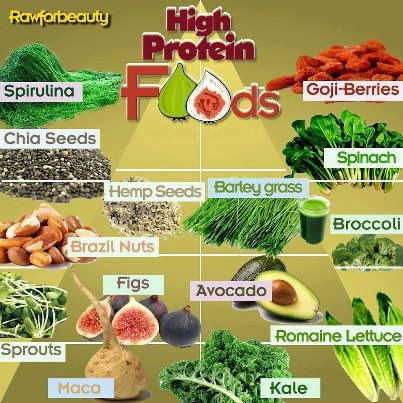 highproteinfoods