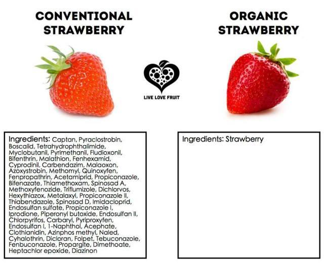 convvsorganicstrawberry