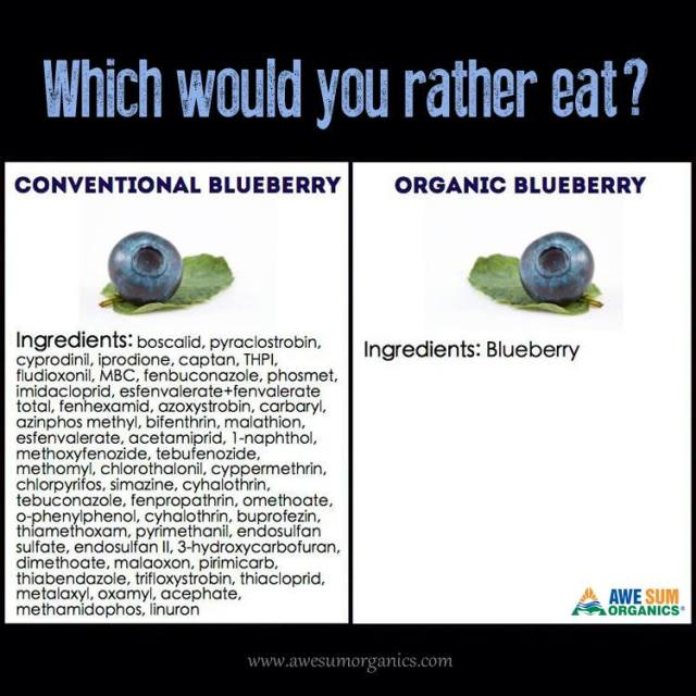 blueberries pesticides