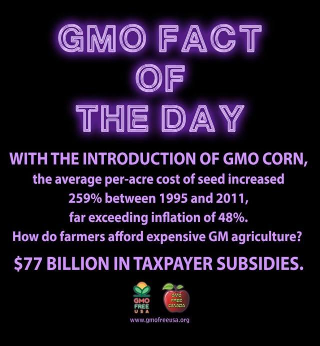 gmo subsidize