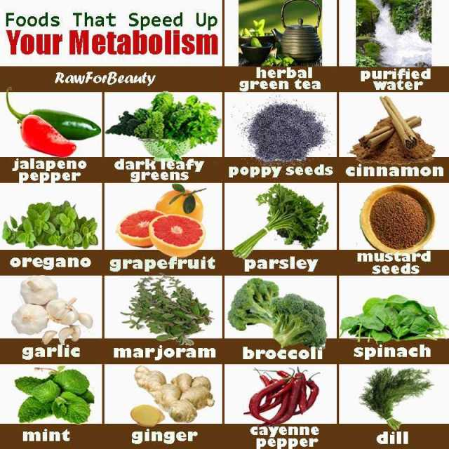 speed-your-metabolism