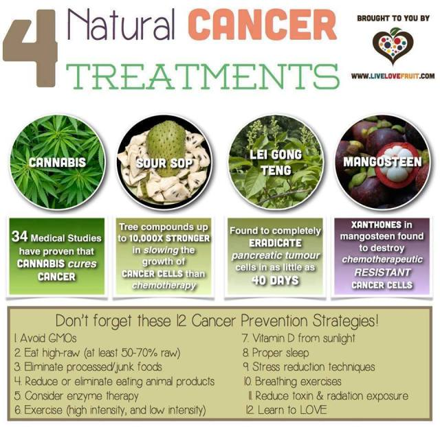 4 natural cancer treatments