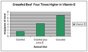 grass fed beef vitamin e